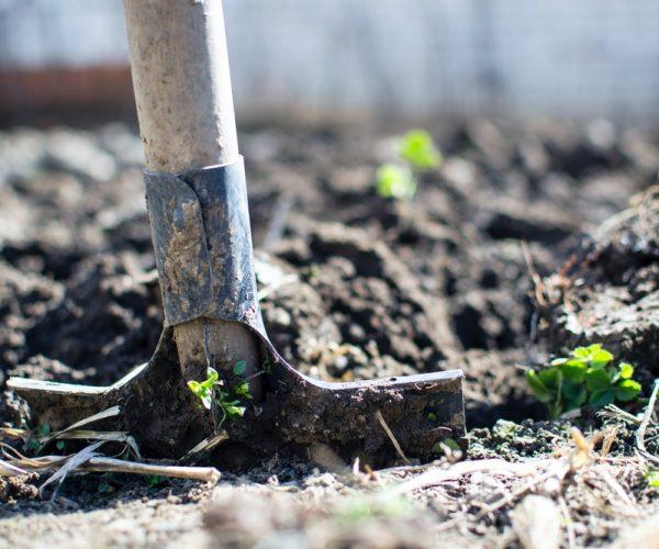 Alles om de tuin te onderhouden